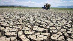 BPBD Kabupaten Bekasi Data Wilayah Rawan Kekeringan